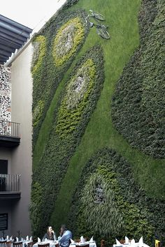 Green Wall Courtyard Dining Area