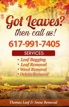 leaf removal print ad joes design work pinterest leaf removal flyer