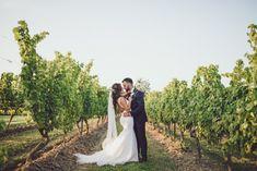 Vineland Estates Winery Wedding in the Summer, Ontario. Trumpet Style Wedding Dress, Open Back Wedding Dress, Wedding Veils, Wedding Poses, Wedding Dresses, Vineland Estates, Wedding Venues Ontario, Chapel Veil, Wedding Highlights