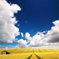 Big Sky in the American Plains