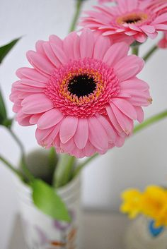 gerbera gives power in the house Flowers For Mom, Sugar Flowers, Pink Flowers, Paper Flowers, Gerbera Flower, Pink Gerbera, Flower Art, Flower Background Wallpaper, Flower Backgrounds