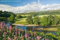 Ruskin's View, Kirkby Lonsdale in the Lune Valley, Cumbria, England