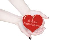 All About Organ Donation - The Chronic Chronicles