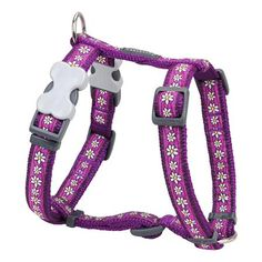 Red Dingo Designer Dog Harness, Small, Daisy Chain Purple * See this great product. (This is an affiliate link) Dog Collars & Leashes, Leather Dog Collars, Electronic Dog Collars, Dingo Dog, Rhinestone Dog Collar, Personalized Dog Collars, Dog Carrier, Dog Hoodie, Daisy Chain