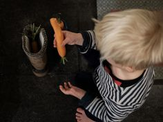 Sinterklaas carrot