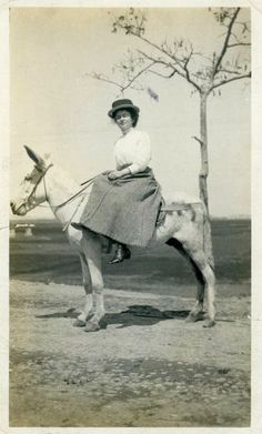 Vintage Photo Donkey Travels Photography Paper by dawnandross, $12.50: