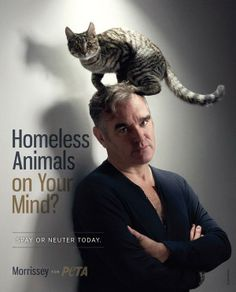 Morrissey for Animals