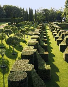 The power of shape in a garden - Jardin de Kerdalo, France.