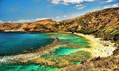 Snorkel+at+Hanauma+Bay,+Oahu