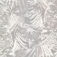 356070 Light Grey Botanical - Adopsis - Black And Light Wallpaper by Eijffinger