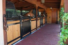 Standard low rise stall front. I love how open these stalls are. Great for small…