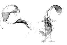 Graphic Design, Packaging Design and Home Desgin Blog by New York Designer: Beautiful Type Design
