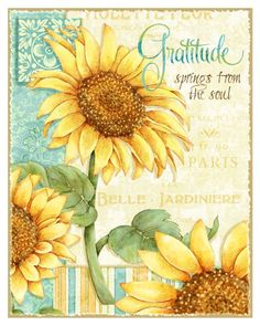 Joy Hall Solid-Faced Canvas Print Wall Art Print entitled Sunflowers - Gratitude, None Sunflower Quotes, Sunflower Pictures, Sunflower Art, Sunflower Paintings, Sunflower Cupcakes, Sunflower Seeds, Canvas Wall Art, Wall Art Prints, Framed Prints