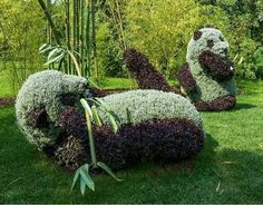 Love this! Botanical Gardens, Canada