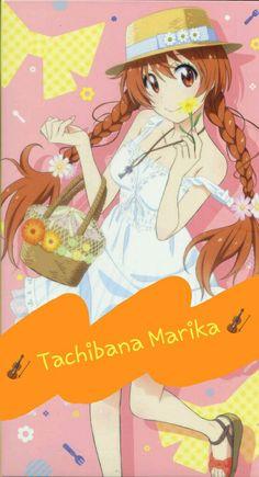 Wallpaper // Tachibana