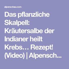 Das pflanzliche Skalpell: Kräutersalbe der Indianer heilt Krebs… Rezept! (Video)   Alpenschau.com