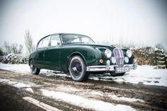 Jaguar- Although I do like the green!
