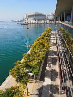 #architecture #arquitectura #Barcelona #parqueempresarial #conventions #mar #Barcelone #Barcelona #tourism #turismo #Catalonia #Catalunya #Cataluña #business #congress #eventos #eventoempresa