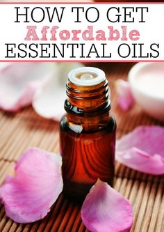 Love essential oils but not the price? Check out how to get affordable essential oils. You don't have to pay a fortune to have the essential oils you love.