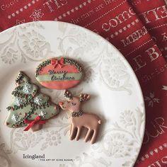 Christmas is coming!❤️