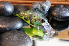 Custom Painted RCL 1 5 Crankbait Rattle Bass Walleye Pike Green Craw | eBay
