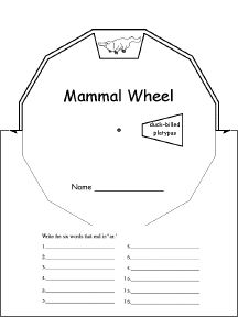 mammals for kids worksheets | Mammal Activities, Worksheets, and ...