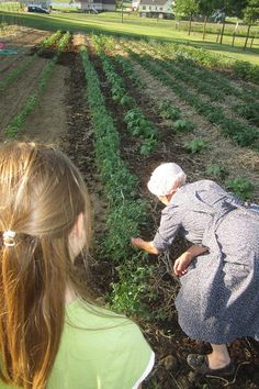 I remember part of our chores on my grandma's farm was to help grandma weed the huge vegetable garden.