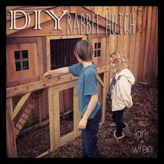DIY Rabbit Hutch: for the outdoor rabbit.   http://larkandwren.us