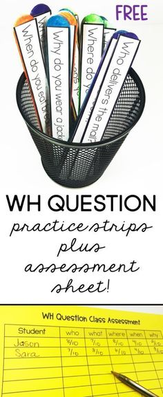 FREE WH QUESTION STRIPS  plus assessment sheet! 10 questions for each WH question.