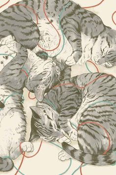 Cats by Laura Graves. S)