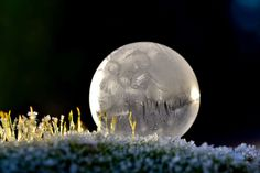 This Is What Happens When You Freeze Bubbles | Photographer: Angela Kelly