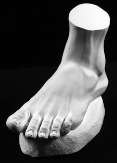http://philippefaraut.com/store/reference-casts/anatomical-casts/male-foot.html