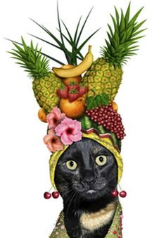 1000 Images About Fruity Headdresses Betsy And The Wise