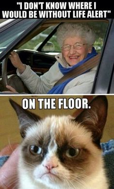 Senior - I don't know where I would be  without Life Alert.   Grumpy Cat - On the floor.