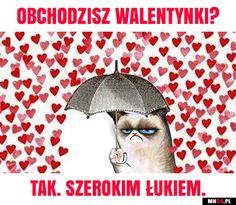 wszystkie memy z neta :v # Humor # amreading # books # wattpad Funny Images, Funny Photos, Dark Net, Photo Fails, Grumpy Cat, Best Memes, Cringe, The Funny, Haha