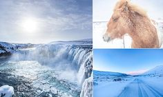 Frozen beauty: Spectacular images show the Iceland's amazing scenery