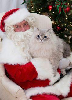When you stop believing in Santa, you get underwear.