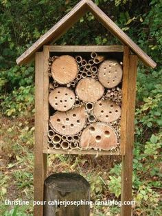 Bees:  #Bee hotel for Mason bees.