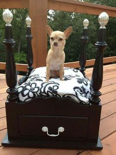 Upcycled 4 poster dog bed - If you are looking for easy, how about turning that old living room side table upside down? Dog Furniture, Furniture Online, Diy Dog Bed, Dog Rooms, Pet Beds, Doggie Beds, Doggies, Bulldog, Chihuahua Love
