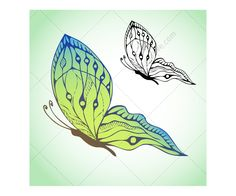 green butterfly drawing - Google Search