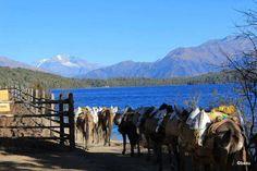 Rara lake one of the most beautiful lakes on the lap of Himalayas.