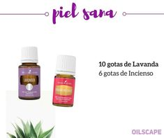 Piel sana Young Living Oils, Young Living Essential Oils, Essential Oil Blends, Diffuser Recipes, Natural Oils, Healthy Tips, Beauty Hacks, Beauty Stuff, Pure Products