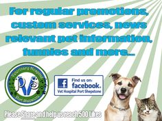 Like Vet Hospital Port Shepstone on Facebook Vet Hospital Port Shepstone has a very active and fast growing Facebook page. Our Facebook page focus on promotions, custom services, news, relevant pet information, funnies, inspirational quotes and more…  http://www.vet-portshepstone.co.za/like-vet-hospital-port-shepstone-on-facebook/