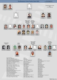 Joseph Bonanno Family Tree | Bonanno family chart 150x150 Mafia Family Charts and Leadership 2011
