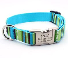Personalized collar with out the tag hanging down to come off!  @Amanda Davis @Brita Gulseth