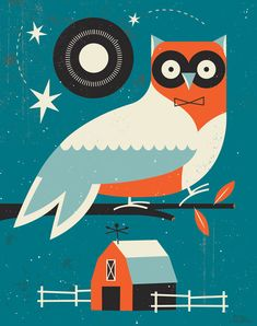 Clemente the Nightowl © tracy walker