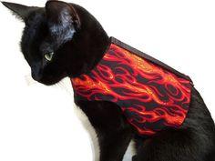 Cat Harness Cat Clothes Flame Cat Harness door RockinDogsCoolCats