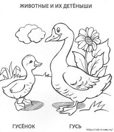 Art Drawings For Kids, Colorful Drawings, Drawing For Kids, Cartoon Drawings, Bird Coloring Pages, Adult Coloring Pages, Coloring Pages For Kids, Coloring Books, Farm Quilt