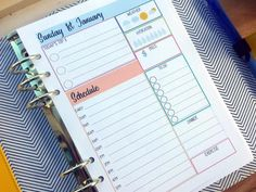 A5/Large Daily Planner Refill   Blue & Peach