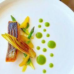 Crispy skin Salmon,orange, braised endive and asparagus